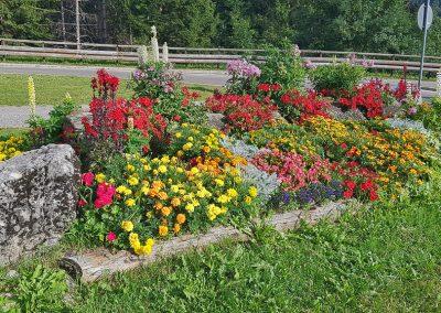 manutenzione giardini spazi verdi trentino-11