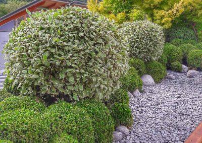 manutenzione giardini spazi verdi trentino-35