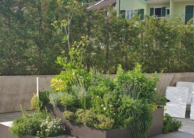 manutenzione giardini spazi verdi trentino-48